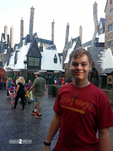Owlery - Our first visit to Universal Orlando and Wizarding World of Harry Potter - come check it out for details on vacation planning and having fun!