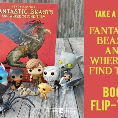 Illustrated Fantastic Beasts and Where to Find Them Reveal